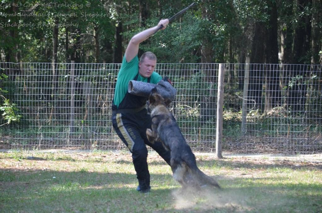 Loving paint job brings German shepherd K-9 statue to life in Orange
